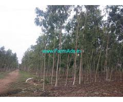 6 Acres Agriculture Land for Sale at Revuru,Atmakur Somasila main road