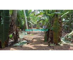 11.5 cents Farm Land for sale in Thiruvallam,Kovalam Bypass Road