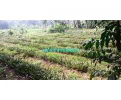 1 Acre Farm Land for Sale near Vengoor,Kuruppumpady