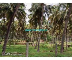 4 Acres Farm Land with Farm Bungalow for Sale at Vannamadai