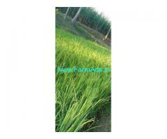 12 Gunta Agriculture Land for Sale in Srirangapatna,Amblee resort