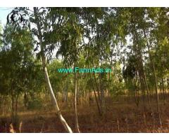 10 Acres Agriculture Land for Sale near Chilla Manu chenu,NH5