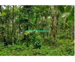 6.90 Acre Farm Land for Sale at Karkala