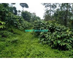 3 acre river touch Coffee Estate for sale, 18 km from  mudigere