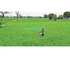 6 Acres Agriculture Land for Sale near Donakonda