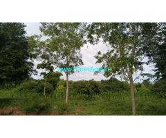 2 Acre Mango Thota For Sale in Bogadhi-Gaddige Route, Mysore