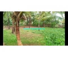 1.5 Acres Coconut farm for sale at Halgooru, Channapatna