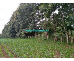 12.35 Acres Farm Land for Sale near Shikaripura Main Road