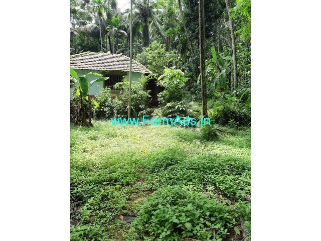 1 acre 10 cents agriculture land for sale Located at Adyar Mangaluru,