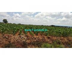 5 Acres Agriculture Land for Sale near Hiriyur