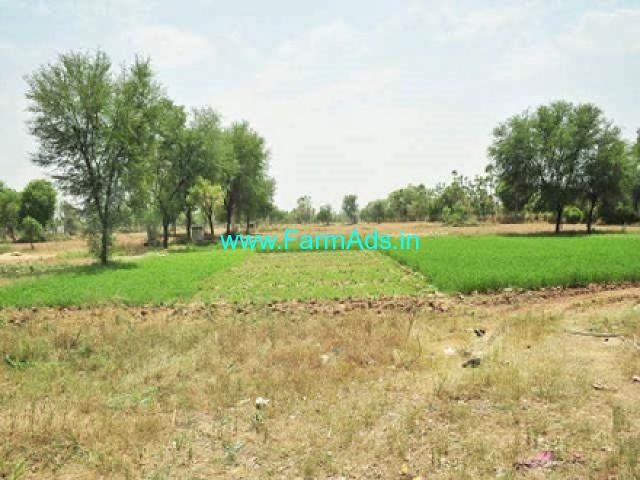 5 Acres Agriculture Land for Sale near Kollegal