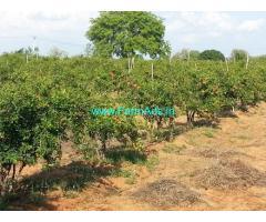 10.25 Acres Agriculture Land for Sale near Yadadri