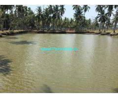 50 Acres Paddy Land Sale near Narsapur,Narsapur Bhimavaram Road