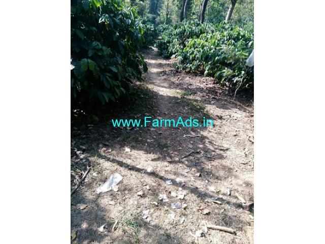 10 Acres Coffee Estate for Sale near Sakleshpur