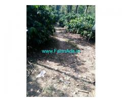 10 Acres Coffee Estate for Sale near Sakleshpur