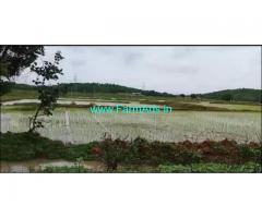 50 Acres Agriculture Land for Sale near Yellareddy