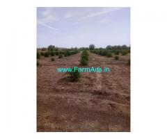 12.80 Acres Lemon Garden for Sale near Rapur,Penchalkona Highway