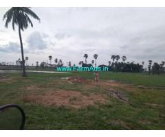 Half acre Agriculture land for sale at Nadakuduru