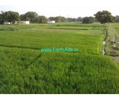 5.8 Gunta Agriculture Land for Sale near Basantpur