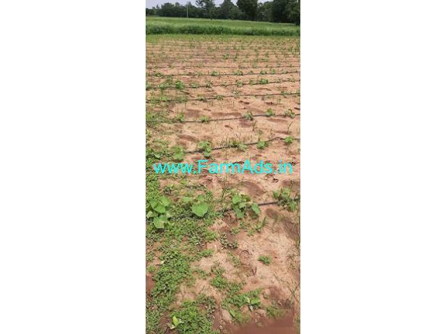 2 Acres Agriculture Land for Sale near Wargal
