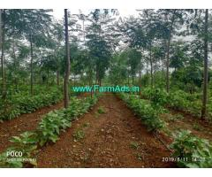 7 Acres Agriculture Land for Sale near Kollegala