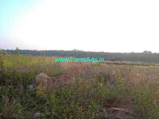 95 Gunte Agriculture Land for Sale near Channarayapatna