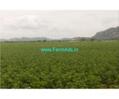 20 Acres Agriculture Land for Sale in Yadagirigutta,Raigir Mothkur Road