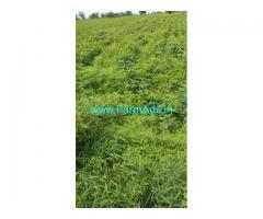 3 Acres Land for Sale at Kankanalapalli