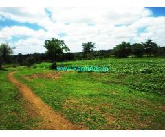 116 Acres Agriculture Land for Sale near Siddapur