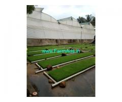 Developed 10 Acres Farm for Sale near Barandadi