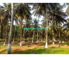 8 Acres Coconut Farm for Sale in Kozhinjampara