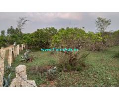 1.73 acres  mango farm land for sale near Shoolagiri.