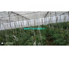 6 Acres Agriculture Land with Poly house for Sale near Shadnagar