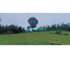 25 acres Farm Land for sale at Kodaikanal.