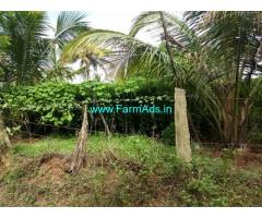 10 Acre Agriculture Land for sale in Chemmanampathy