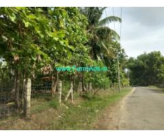 9.5 Acre Coconut Mango farmland for sale in Chemmanampathy