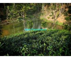 11 Acres 30 Cents Agriculture Land for Sale near Idukki