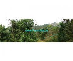 50 Cents Agriculture Land for Sale near Chungakkunnu,Kottiyoor Road