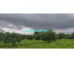5 acres beautiful mango garden for sale near parigi,  20 km from Parigi