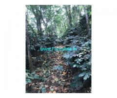 Well Maintained 30 Acres Coffee Estate for Sale near Coorg