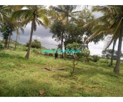 27 Guntas Coconut Farm Land for Sale near Nelamangala