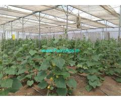 1.40 Acres Agriculture Land for Sale in Kandi,IIT Kandi