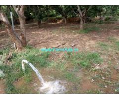 2 Acres Mango Garden for Sale at Karveti Nagar