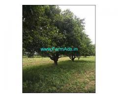 8 Acres Mango Garden for Sale near Narsapur