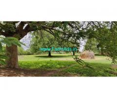 3 Acres Agriculture land for sale near Parigi