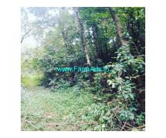 2 acre land for sale in sakleshpura , Hassan district.