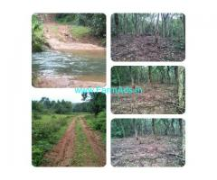10 acre plain land, covered by jungle trees for Sale in chikmagalur