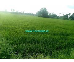 7 Acres Agriculture Land for Sale near Bejjenki
