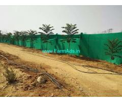 11.08 Acres Agriculture Land for Sale at Rayalapur