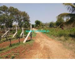 69 Acres Wine Yard for Sale near Doddaballapur